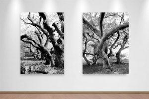 Kunst online kaufen (2)