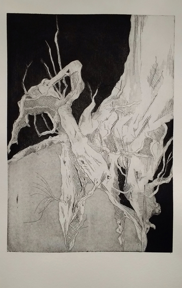 Naturformen 1, Anna Oeldig