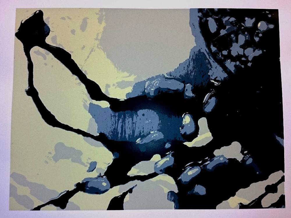 Biomorphe Abstraktionen 1, Vera Kruse